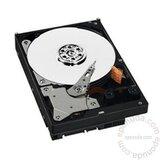 Western Digital Av-gp 320gb (wd3200avvs) hard disk Cene