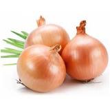 Sveže organsko povrće
