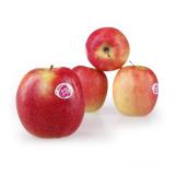 Sveže organsko voće