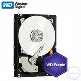 Western Digital Purple 2TB WD20PURX hard disk Cene
