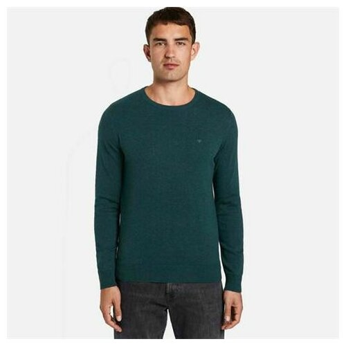 Tom Tailor muški džemper 30101281910 tamno zelena  Cene